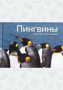 Пингвины. Важные и дружные