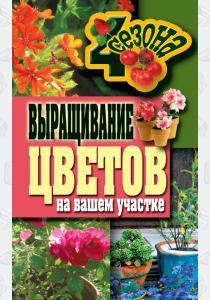 Выращивание цветов на вашем участке