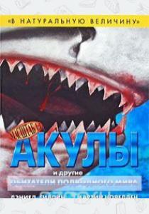 В натуральную величину. Акулы и другие обитатели подводного мира