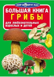 Завязкин Олег Владимирович Завязкин Олег. Большая книга. Грибы